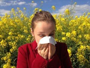 Jeune femme se mouchant devant un champ de colza