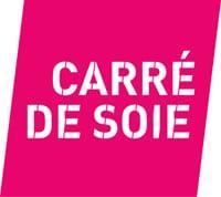 Logo Carré de soie