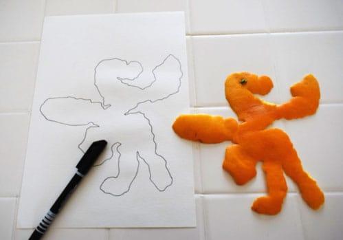 dessin avec une agrume