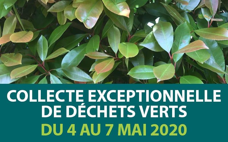 Collecte exceptionnelle de déchets verts  du 4 au 7 mai