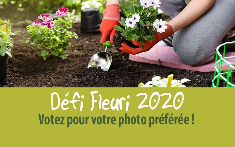 Défi fleuri - Votez sur Facebook pour votre photo préférée !