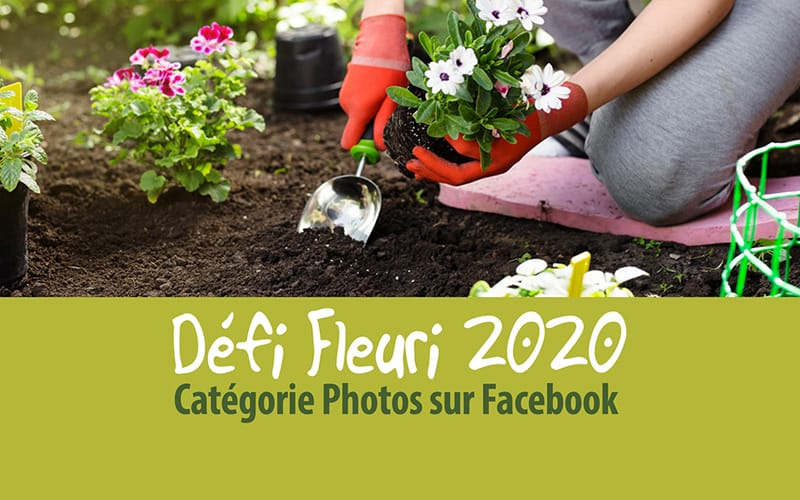 Défi Fleuri 2020 en photos : les gagnants