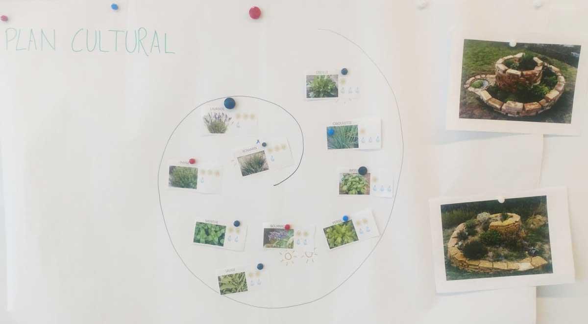 Éco-projet de spirale aromatique - École Beauverie - octobre 2020