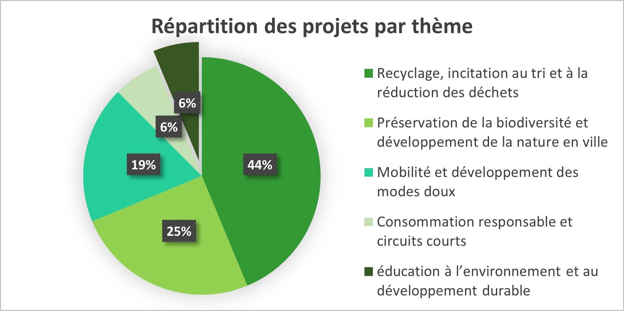 Thèmes des éco-projets 2020