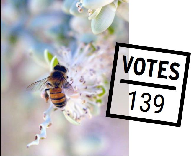 """Illustration d'abeille pour le projet """"Sauvons les abeilles de Vaulx"""""""