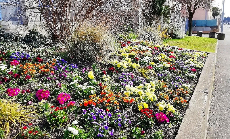 fleurs commissariat
