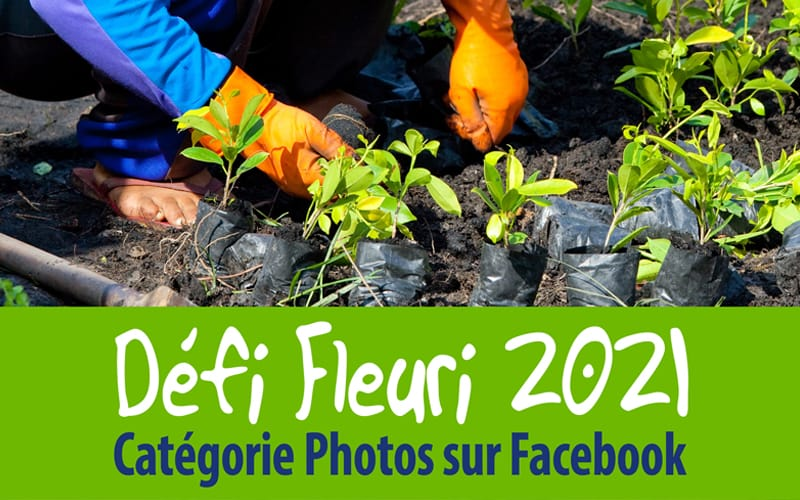 Défi Fleuri 2021 en photos sur Facebook