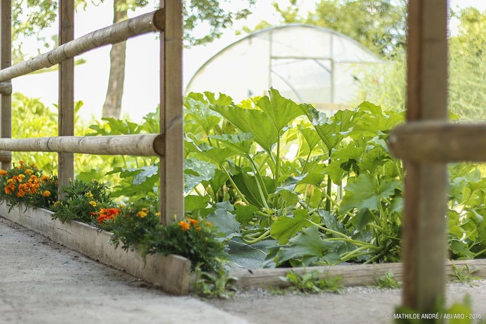 atelier jardinage Grand parc 2021